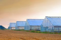 Greenhouses dawn Royalty Free Stock Photo