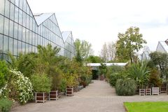 Greenhouses and exotic plants Botanical Gardens, Netherlands Royalty Free Stock Photo