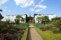 Greenhouses garden. Stock Images