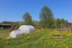 Greenhouses for growing vegetables three. Plastic greenhouses for growing vegetables on the farm field Royalty Free Stock Photo