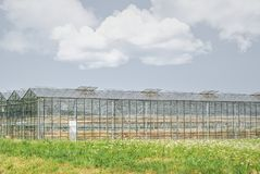 Greenhouses for growing vetetables with dry crop. Glasshouse or greenhouses and beautiful blue cloudy sky. Hydrated crop result from too dry summer royalty free stock images