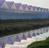 Greenhouses for horticulture with grass, sky, ditch and reflection in water. Greenhouses for horticulture in an ordered pattern with grass, sky, ditch and stock photo