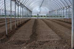 Greenhouses inside Stock Photos