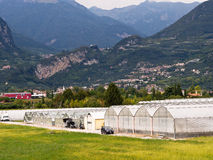 Greenhouses  in Italy Stock Images