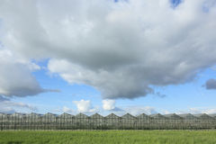 Greenhouses onder cloudy sky Stock Images