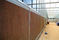Greenhouses skeleton Royalty Free Stock Photos