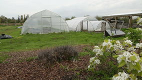Greenhouses in Spring dolly shot. Plastic covered greenhouses at the start of the spring season