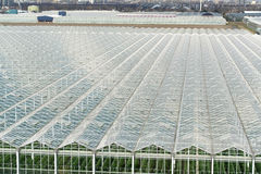 Greenhouses from top view Royalty Free Stock Photography
