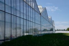The greenhouses of the vegetable garden royalty free stock photography