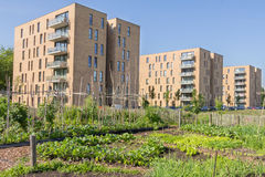 Greening urbain Photos stock