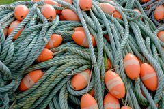Green fishing net ropes with orange floaters stock photo