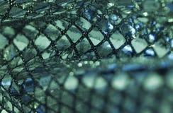 Greenish metallic sequined back Stock Photos