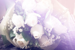 Greenish white roses bouquet Stock Photography