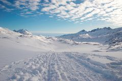 Greenland. Landscape of Greenland with mountains and footprints stock photo