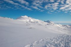 Greenland. Landscape of Greenland with mountains and footprints royalty free stock photo