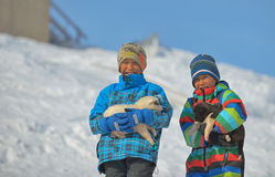 Greenland dog puppies and kids in  Greenland- 07 April 2013 Stock Images