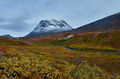 Greenland Fall. Mountain in Fall colors in Greenland Stock Photo