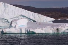 greenland isberg Arkivbilder
