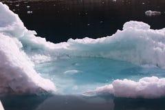 greenland isberg Arkivbild