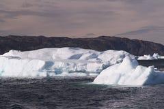 greenland isberg Arkivfoto