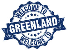 Greenland round ribbon seal Royalty Free Stock Photo