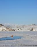 Greenlandic Fishing Boat Royalty Free Stock Photography