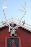 Greenlandic House. Reindeer antlers on a building - Qasigiannguit - formerly Christianshab - Greenland Stock Photos