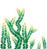 Greenleaves på väggen royaltyfri illustrationer