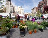 Greenmarket NYC stock afbeelding