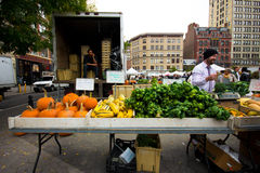 GREENMARKET NYC LANDWIRT-MARKT Stockbilder