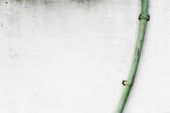 Greenngoot op witte muur Stock Fotografie