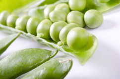 Greenpea macro Stock Image