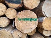 Greenpeace dans le ¼ de bialowieÅ une forêt Image libre de droits