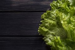 Greens on a black table. Fresh salad on a black wooden table Royalty Free Stock Images