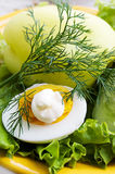 Greens, egg with mayonnaise Royalty Free Stock Photo