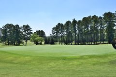 Greens and fairway on golf course, Georgia, USA Royalty Free Stock Photos