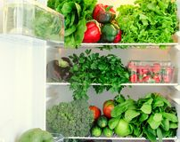 Greens, fruits and vegetables in fridge. Vegan, raw, healthy lifestyle concept Royalty Free Stock Photo