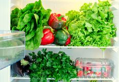 Greens, fruits and vegetables in fridge. Vegan, raw, healthy lifestyle concept Stock Photography