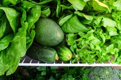 Greens, fruits and vegetables in fridge. Vegan, raw, healthy lifestyle concept Royalty Free Stock Images