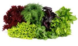 Greens Stock Photos