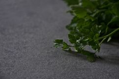 Greens parsley on the table close-up, background stock photos