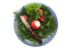 Greens and radishes on a blue plate with a knife Stock Photos