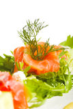 Greens and salmon Royalty Free Stock Photos