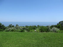 The greens on the seashore. Bushes, trees around the lawn with green grass on the Black Sea coast in Odessa Royalty Free Stock Photography