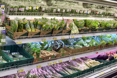 Greens in the supermarket Stock Image