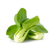Greens van de raap op witte achtergrond Royalty-vrije Stock Afbeelding