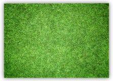 Greensward football Royalty Free Stock Images