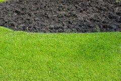 Greensward in garden background Stock Photo