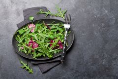 Greent salad mix. Green salad mix plate with rucola, frisee, radicchio and lamb`s lettuce. Top view with copy space stock photography