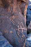 Greenwater Valley Petroglyph #2. Petroglyph in Greenwater Valley, Death Valley California Royalty Free Stock Images